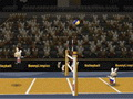 BunnyLimpics Volleyb