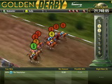 Golden Derby Horse Racing